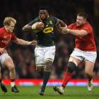 New Springbok captain Siya Kolisi on the charge last year against Wales. Photo: Getty Images