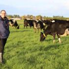 Southern District Harcourts Royal Agricultural Society Rural Ambassador Award winner Brooke Flett...