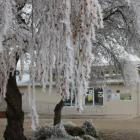 Poolburn School in the midst of a hoar frost which school staff say was the biggest in four years...