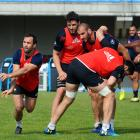 Morgan Parra during a training session at National center of rugby. Photo: Getty Images