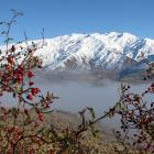 The view towards Cardrona Alpine Resort, including lower-altitude land subject to an Environment...