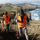 University of Otago student Anna Tarr (left) and fellow volunteer Sophie Briggs take part in  a...