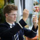 Otago Boys' High School pupil Nic Sinnott takes a DNA sample for a gel electrophoresis. PHOTO:...
