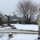 Snow coats a property south of Clinton yesterday. PHOTO: LAURA PHILLIPS WILLIAMS