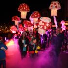 Children carry illuminated fungi up Stuart St during the Dunedin Midwinter Carnival on Saturday....
