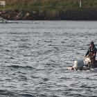 A dinghy and one of three people that got into trouble near Portobello yesterday are taken back...