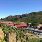The existing winemaking building in the centre of the photograph will become the Gibbston Valley...