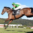 Wise Men Say (Isaac Lupton) leaps towards victory in the Wellington Steeplechase at Trentham on...