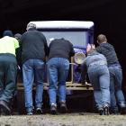 Dunedin Fire Brigade Restoration Society members push a veteran delivery van into the society's...