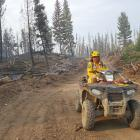 Te Anau rural firefighter Hamish Angus on patrol in British Columbia, Canada, during the record...