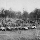 New Zealanders bivouacked in a wood on the Western Front; the scene being somewhat like an old...