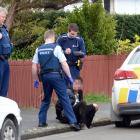 A man talks to police after being apprehended in Tasman St following a foot pursuit through...