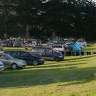 Dozens of freedom campers' vehicles at Warrington domain last night. Photo: Linda Robertson
