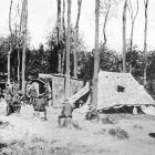 A New Zealand field ambulance established in a wood on the Western Front. — Otago Witness, 4.9.1918.