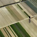Under a low-emissions economy scenario, land near urban areas would be given over to horticulture...