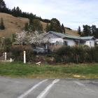 A vehicle sits on a Kurow property after it smashed through a hedge and hit a cherry tree, and...