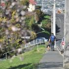 A police dog and handler patrol in Oakwood Ave, in Dunedin, searching for a man who allegedly...
