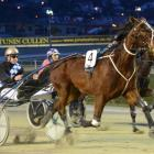 Pyramid Magic, driven by Matthew Williamson, wins the opening race at Forbury Park last night....