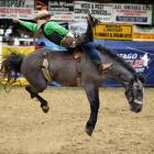Maddo Taylor from Kurow rides open bareback at the Outram Rodeo on Monday. Photo: Stephen Jaquiery
