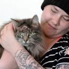 A survivor of two air-gun shots to the head, Toast (4) recovers at home yesterday with the owner...