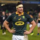 Springboks loose forward Francois Louw. Photo: Getty Images