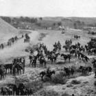 A squadron of the New Zealand Mounted Rifles watering the horses near the main crossing of the...