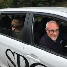 SPCA Dunedin animal welfare director Jeff Herkt and mastiff-cross dog Daryl, who is available for...