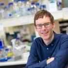 Molecular microbiologist Peter Fineran in his laboratory. Photo: Sharron Bennett