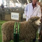 Jim Sidey (left), of Waikari, was pleased to win supreme champion wool sheep. Photo: David Hill