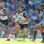 Shaun Johnson in action for the Warriors against the Gold Coast Titans this year. Photo: Getty...