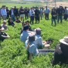 Delegates attending the New Zealand Grassland Association conference listen to speakers and enjoy...