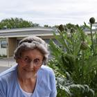 Peg Mathieson and her artichoke plant. Photo: Shawn McAvinue