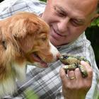 Ten-month-old pup Holly is being trained by her owner, Prof Phil Bishop, of the University of...