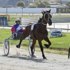 War Admiral, in the hands of Samantha Ottley, makes it look easy in the feature trot at the...