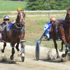 Funatthebeach (6) and driver Tim Williams beat A G's White Socks and Ricky May (right) to win the...