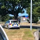 Police arrest a man near the Dunedin Oval after reports of a theft at a Hunting and Fishing store...