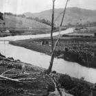 A picturesque bend on the Owaka River, Catlins District, Otago. — Otago Witness, 1.1.1919.