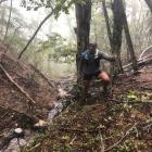 Competitors in the inaugural Revenant Ultra Adventure Run will face gruelling terrain as they...