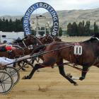 Queen Bee Bardon produced a big finish to take out the Roxburgh Cup yesterday. Photo: Wild Range...