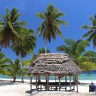 Samoa's Savai'i Island is nothing short of a true tropical paradise.