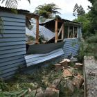 A Dunedin garage is worse for wear after a large tree smashed into it yesterday morning. Photos:...