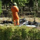 Fire crews in Alexandra check the scene after a fire that was caused by a tree falling on to a...