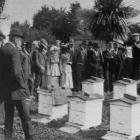A practical demonstration of apiary work at Mr Naismith's apiary, Mosgiel, by Mr E. A. Earp,...