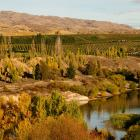 Some of the country's smaller wineries could face challenges in distribution deals, and potential...