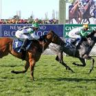 Riccarton filly Emily Margaret, seen winning here at home last September, starts as third...