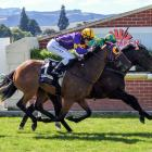 Gallant Boy and rider Terry Moseley fight back to win the White Robe Lodge Weight For Age from...
