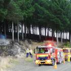 Firefighters discuss plans for fully extinguishing a forestry fire near Milton after containing...
