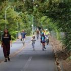 Newton School cancelled its walking bus this year because it was too dangerous. Photo: RNZ