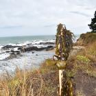 A pou marks the site where Kereta Tatana (24), of Ahipara, Northland, and Wharerika Popata (30),...