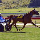 Enigmatic trotter One Over Da Stars strides out perfectly to win at Oamaru on Saturday. PHOTO:...